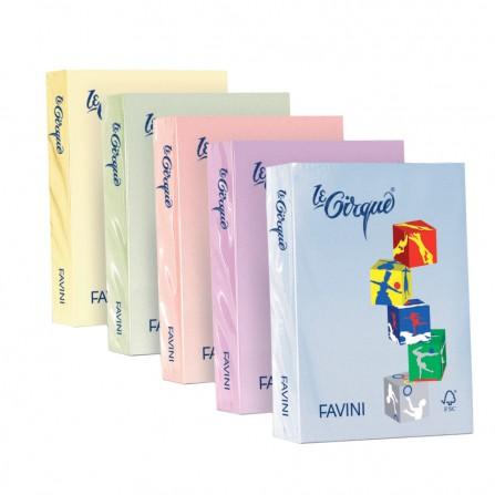 Carta colorata le Cirque - A3 - Camoscio